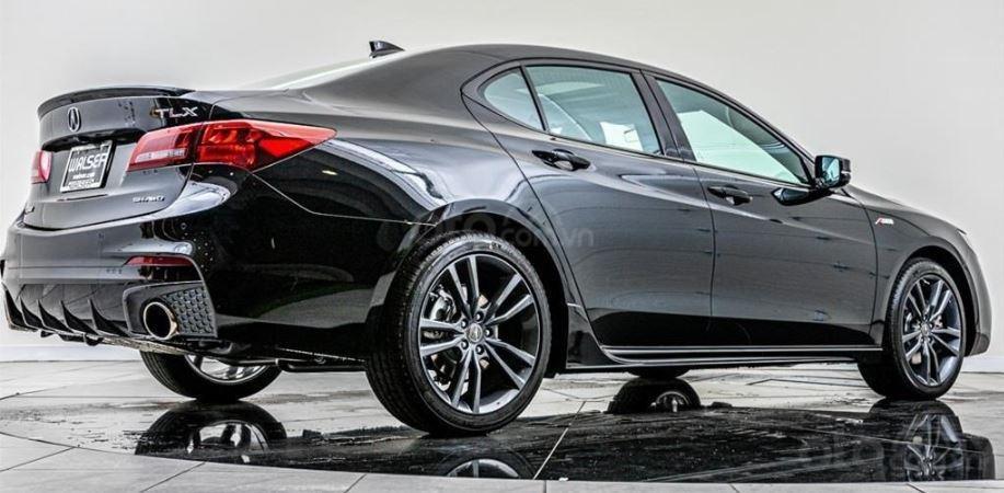 Đánh giá xe Acura TLX 2020 về đuôi xe - chạm trỗ