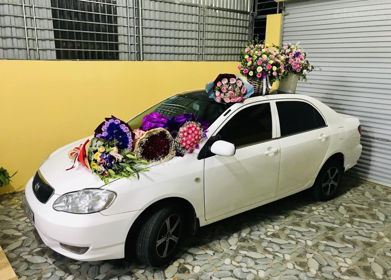 Cần bán xe Toyota Corolla altis 1.3L năm 2001, màu trắng-6