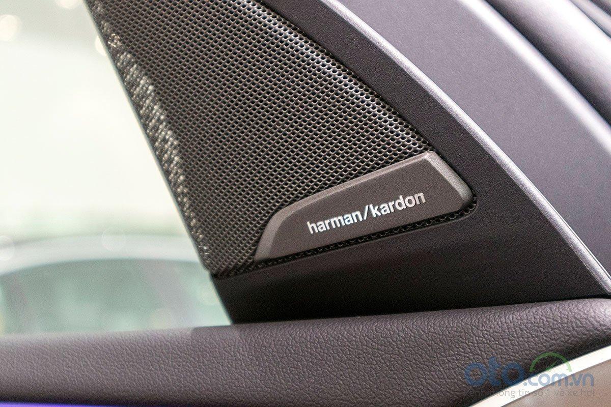 Đánh giá xe BMW X3 2019: Dàn âm thanh Harman Kardon 16 loa.