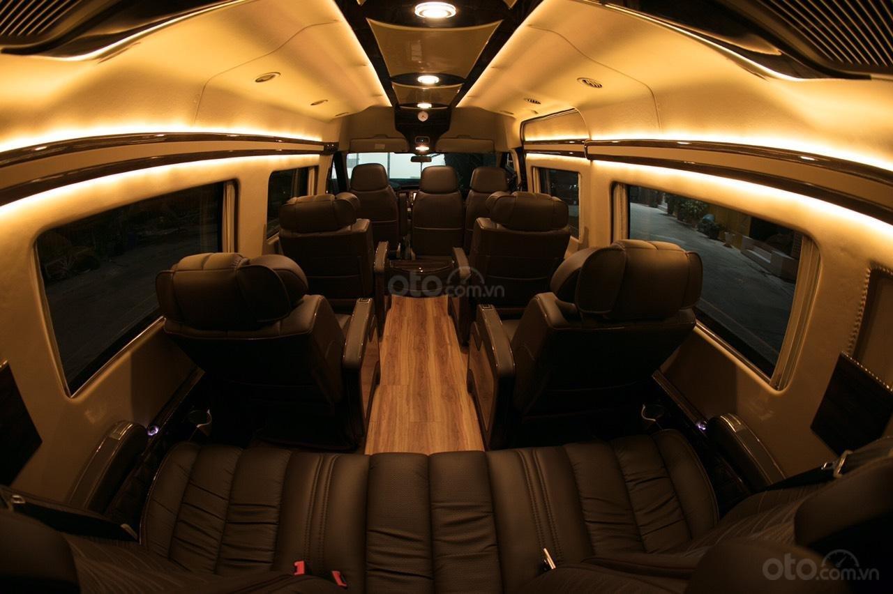Bán Ford Limousine 10 chỗ xả hàng giảm 100 triệu, liên hệ 0933834796 (14)