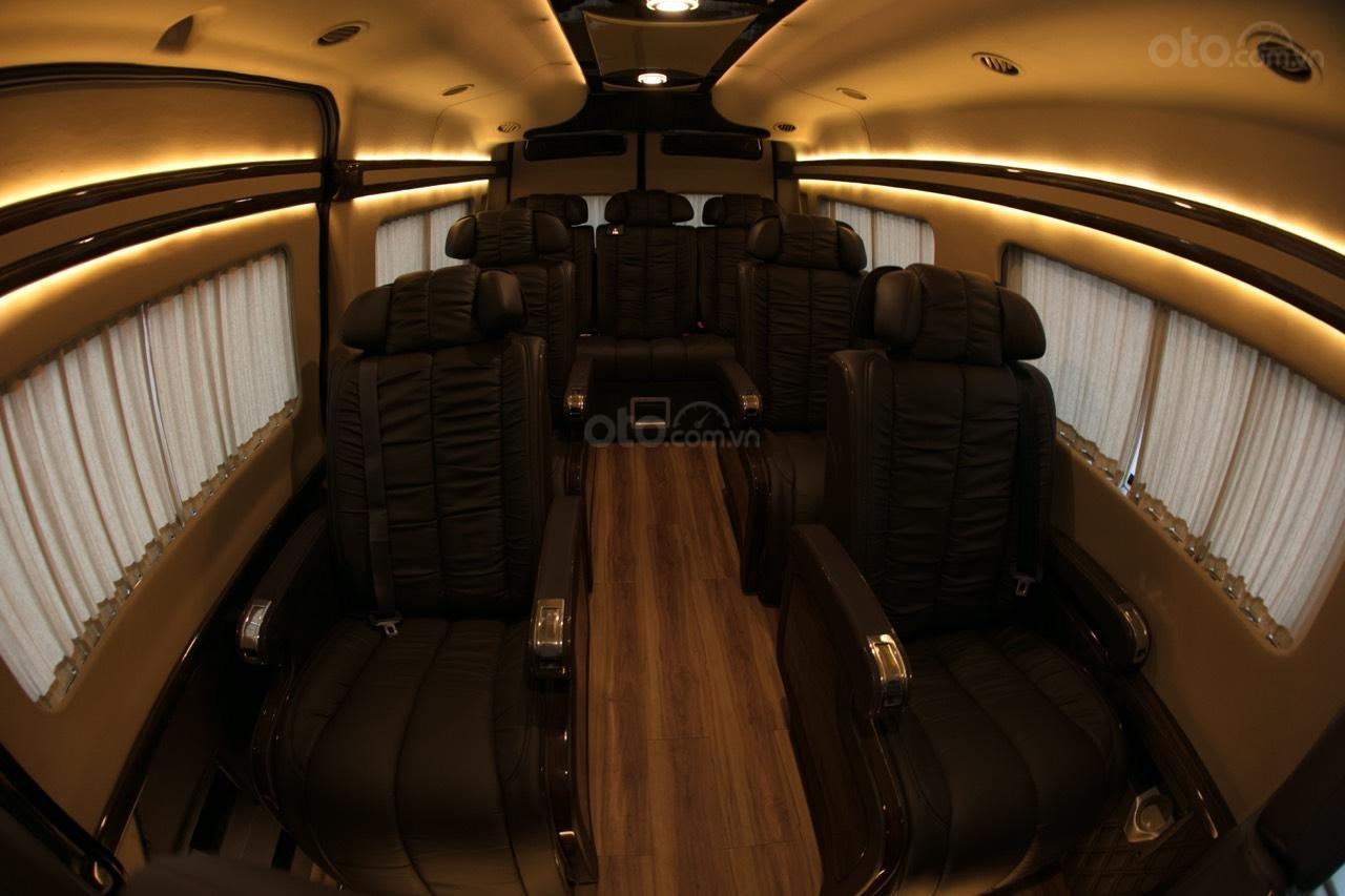 Bán Ford Limousine 10 chỗ xả hàng giảm 100 triệu, liên hệ 0933834796 (20)