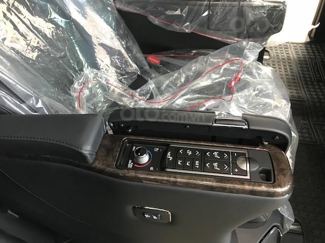 Bán Toyota Alphard năm sản xuất 2019, màu đen, nhập khẩu nguyên chiếc (7)