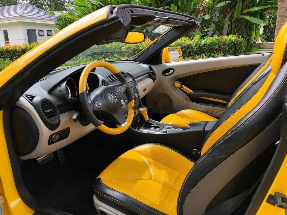 Bán Mercedes SLK350 2008, màu vàng, nhập khẩu (6)
