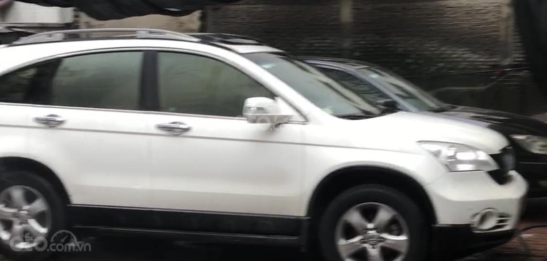 Cần bán Honda CR V đời 2009, màu trắng (3)