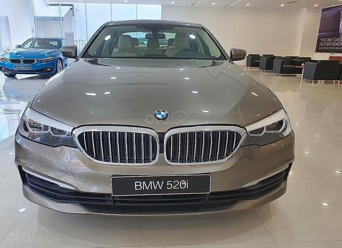 Bán BMW 5 Series 520i sản xuất năm 2019, màu xám, nhập khẩu nguyên chiếc (1)