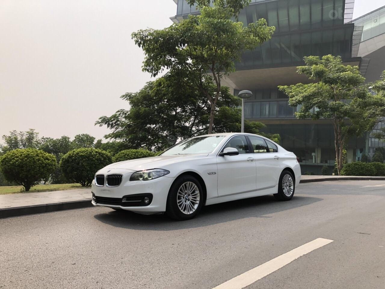 Bán BMW 5 Series 520i năm sản xuất 2013, xe nhập model 2014 (2)