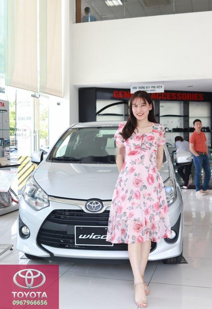 Bán Toyota Wigo sản xuất 2019, màu bạc (3)