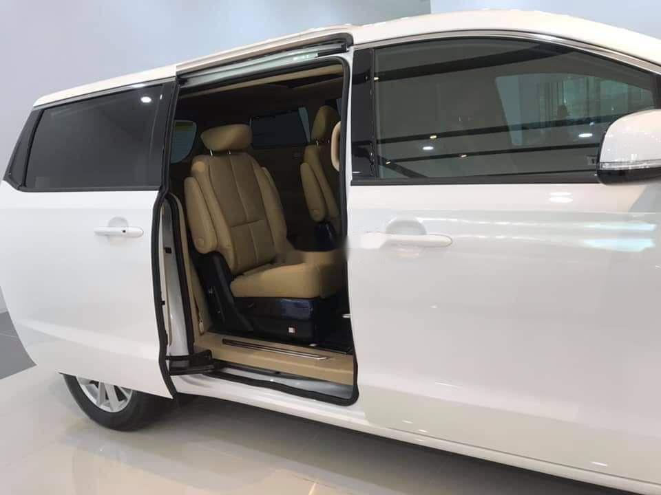 Bán Kia Sedona đời 2019, nhập khẩu nguyên chiếc (8)