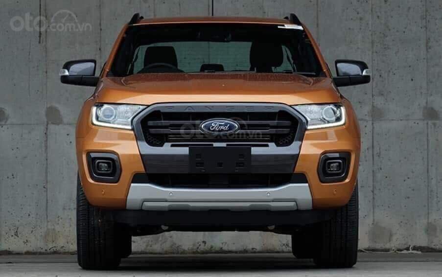 Bán ô tô Ford Ranger Wildtrak đời 2019, màu nâu, nhập khẩu, 801 triệu (8)