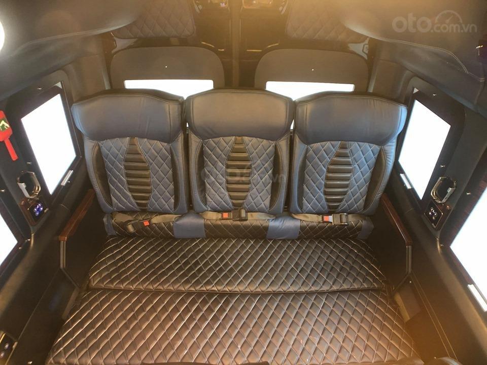 Bán Solati iRICH - Limousine chuẩn mới thế giới do Việt Nam sản xuất (4)