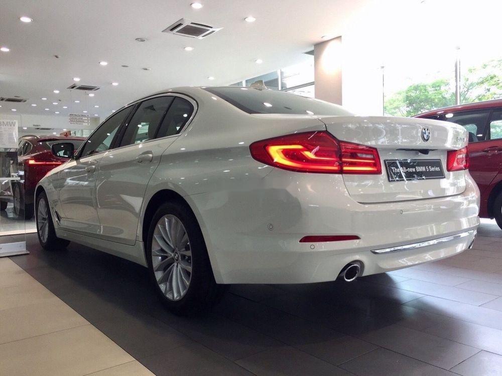 Bán xe BMW 520i sản xuất năm 2019, màu trắng (4)