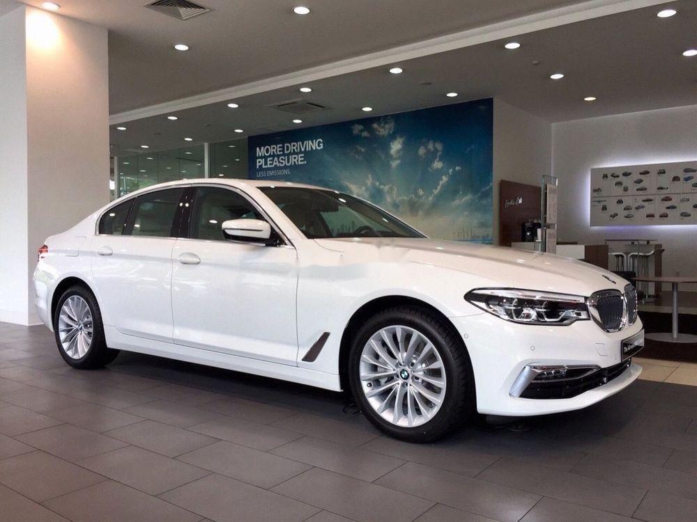 Bán xe BMW 520i sản xuất năm 2019, màu trắng (1)