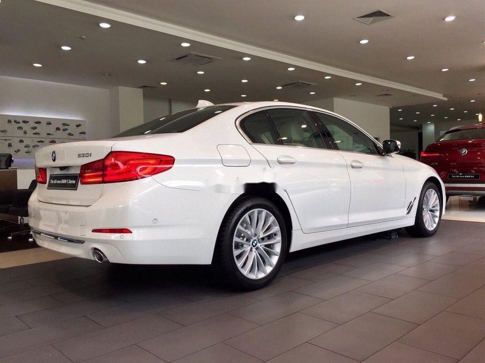 Bán xe BMW 520i sản xuất năm 2019, màu trắng (3)
