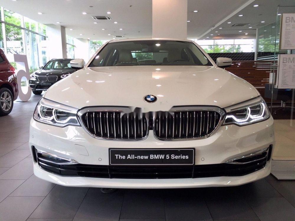Bán xe BMW 520i sản xuất năm 2019, màu trắng (2)