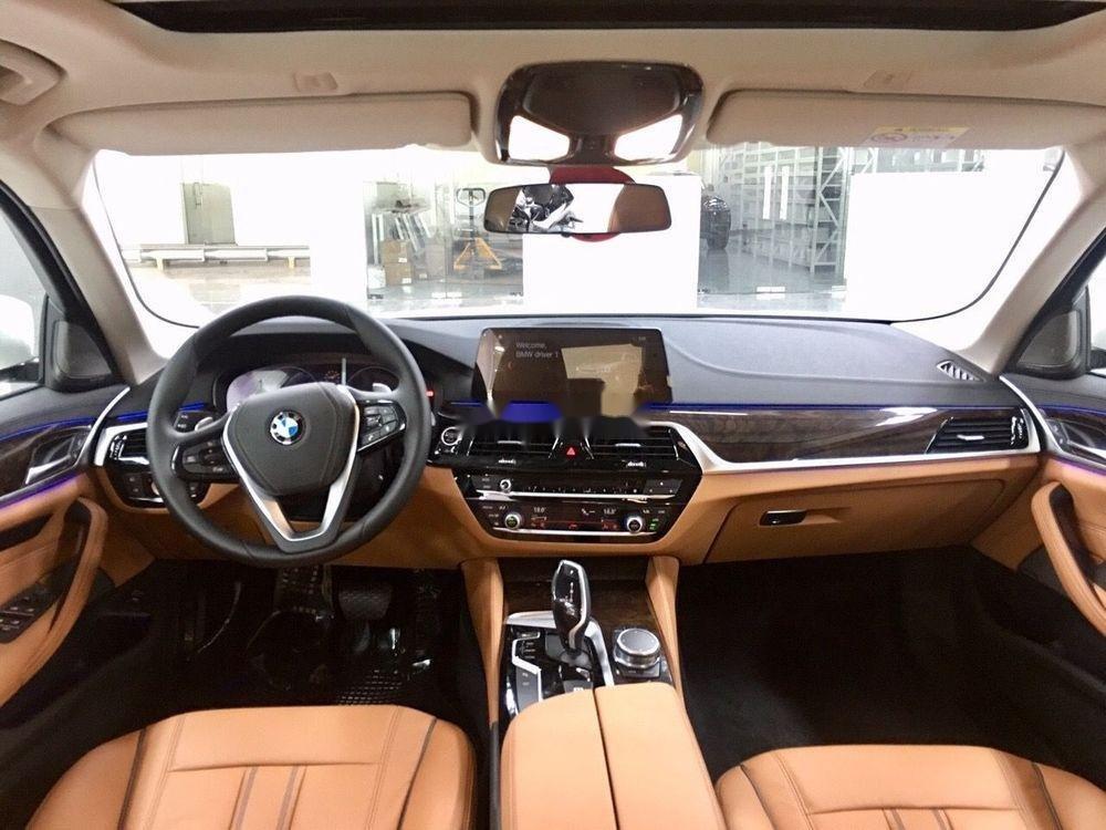 Bán xe BMW 520i sản xuất năm 2019, màu trắng (6)