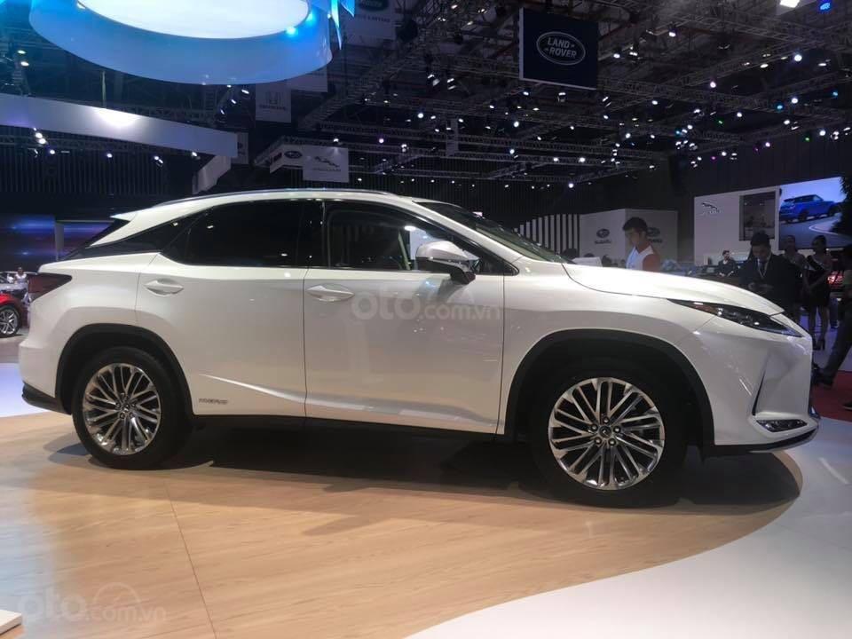 Lexus RX350 model 2020 chính hãng mới 100% - 0945368282 (3)