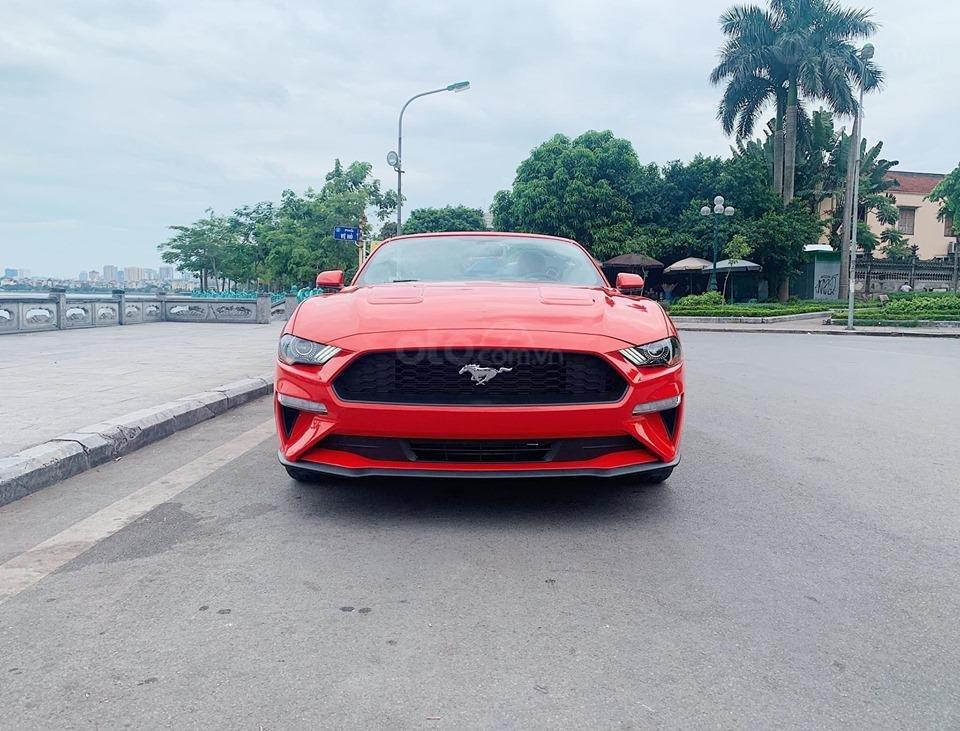 Bán Ford Mustang EcoBoost Fastback 2019, màu đỏ, nhập khẩu (1)
