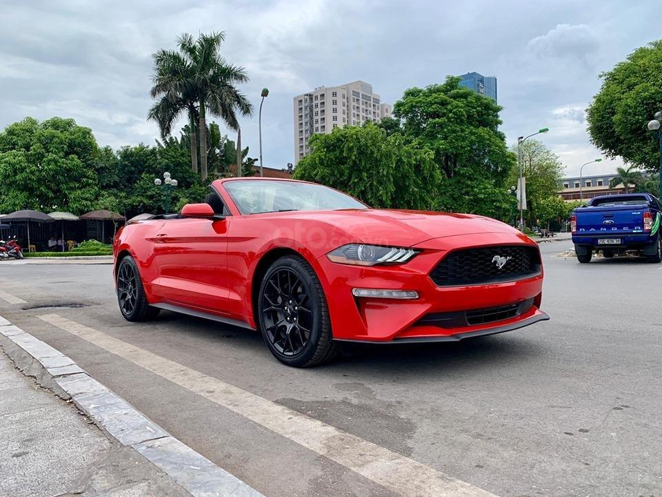 Bán Ford Mustang EcoBoost Fastback 2019, màu đỏ, nhập khẩu (3)