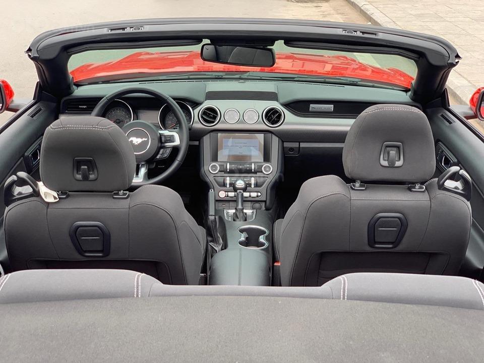 Bán Ford Mustang EcoBoost Fastback 2019, màu đỏ, nhập khẩu (4)