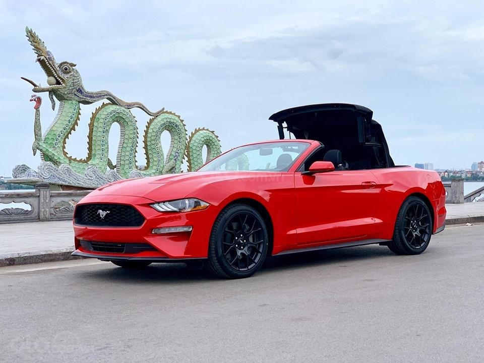 Bán Ford Mustang EcoBoost Fastback 2019, màu đỏ, nhập khẩu (2)