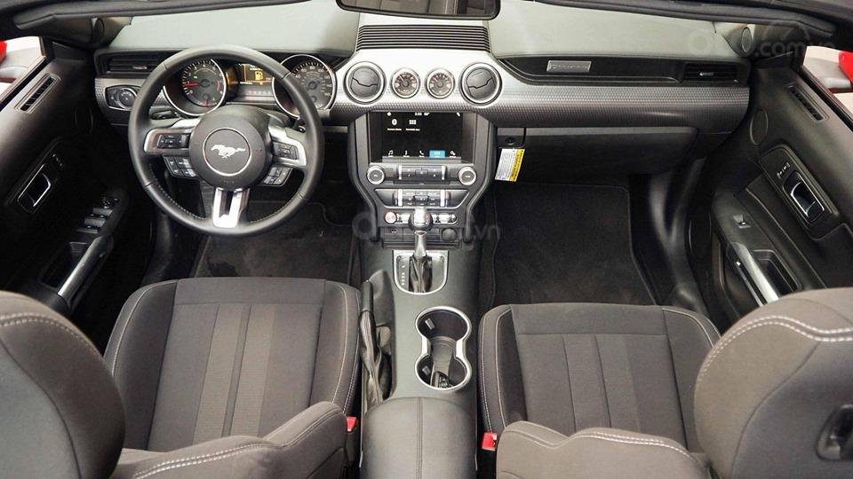 Bán Ford Mustang EcoBoost Fastback 2019, màu đỏ, nhập khẩu (10)