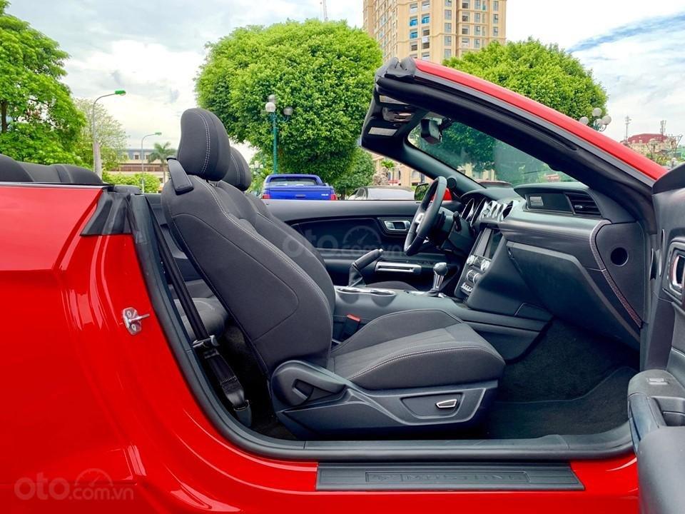 Bán Ford Mustang EcoBoost Fastback 2019, màu đỏ, nhập khẩu (6)