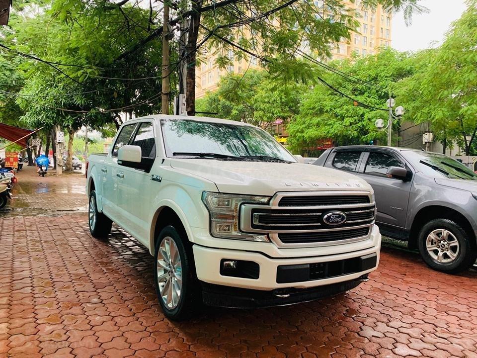 Bán ô tô Ford F 150 năm 2019, màu trắng, nhập khẩu (6)