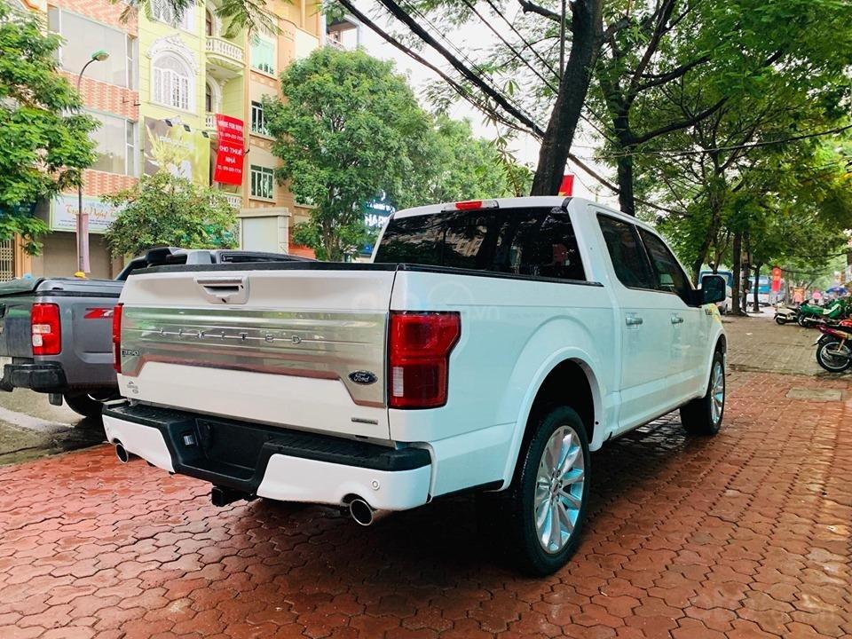 Bán ô tô Ford F 150 năm 2019, màu trắng, nhập khẩu (2)