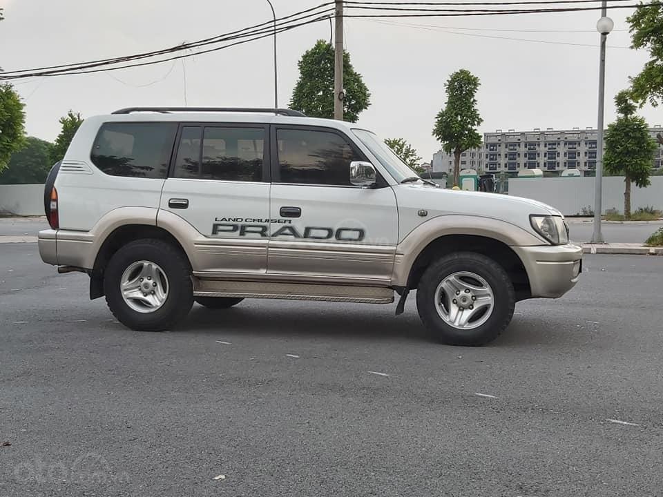 Bán Toyota Prado Diesel (máy dầu) đời 1996, màu trắng, nhập khẩu nguyên chiếc (1)