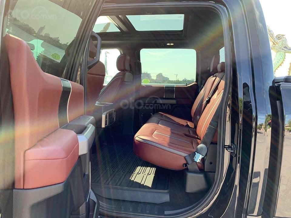 Bán ô tô Ford F 150 Platinum sản xuất năm 2019, màu đen, nhập khẩu (10)