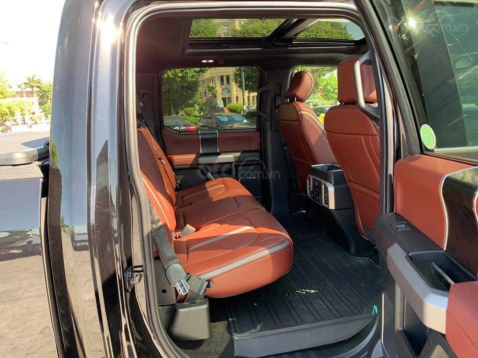 Bán ô tô Ford F 150 Platinum sản xuất năm 2019, màu đen, nhập khẩu (8)