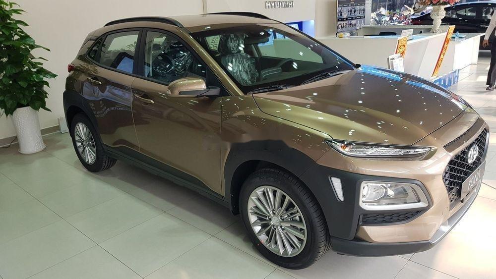 Cần bán xe Hyundai Kona năm sản xuất 2019, màu nâu, giá tốt (1)