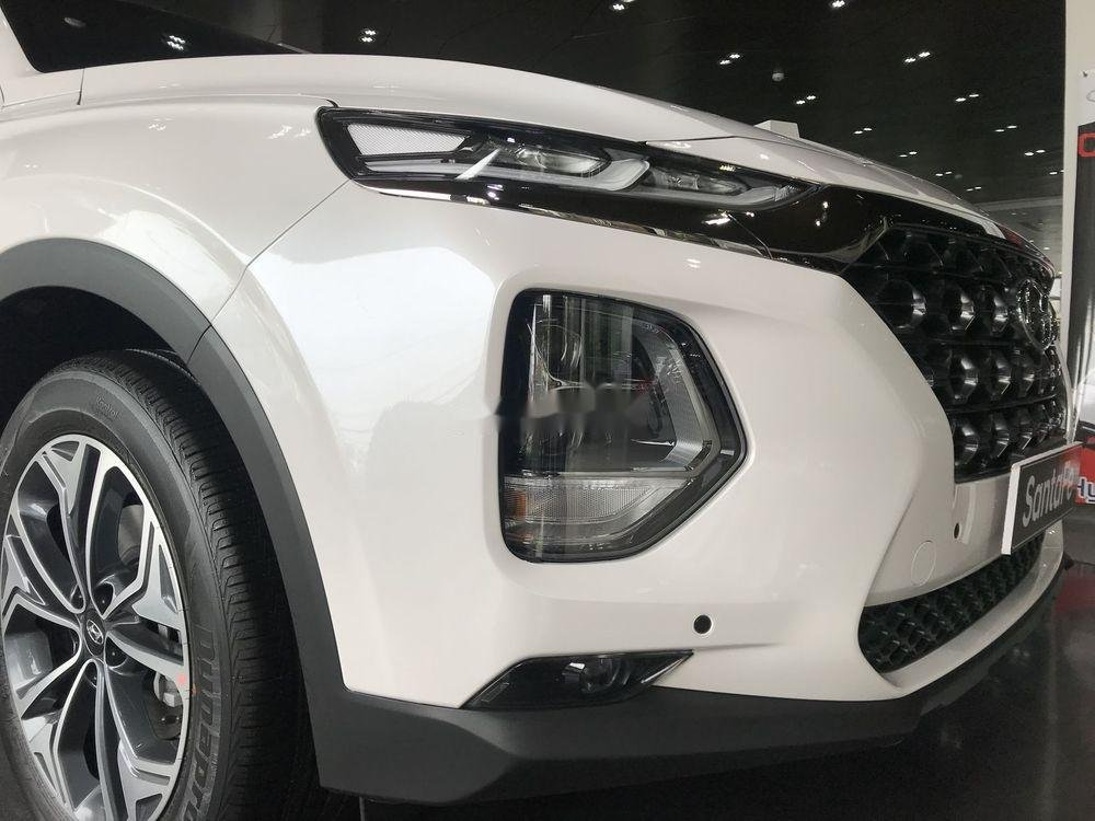 Cần bán Hyundai Santa Fe đời 2019, khuyến mãi hấp dẫn (3)
