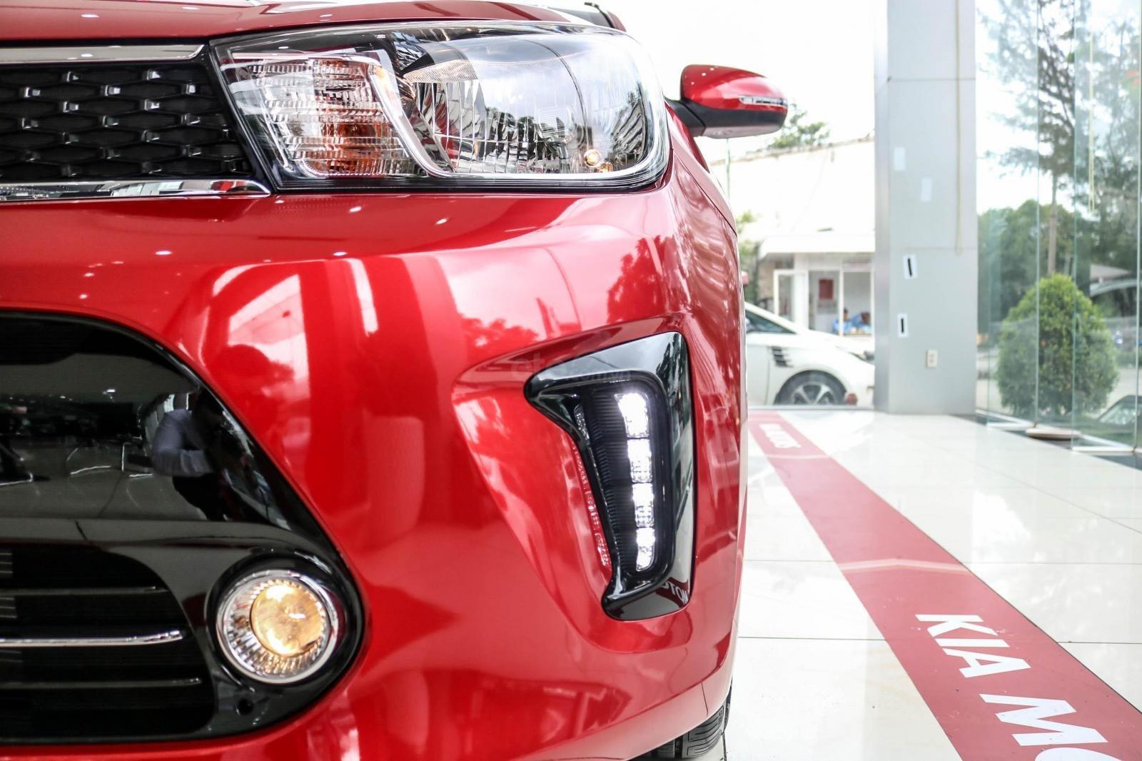 New Kia Soluto 2019 giảm giá 10 triệu tiền mặt, có hỗ trợ vay ngân hàng đến 80%, hotline: 0522986497 (14)