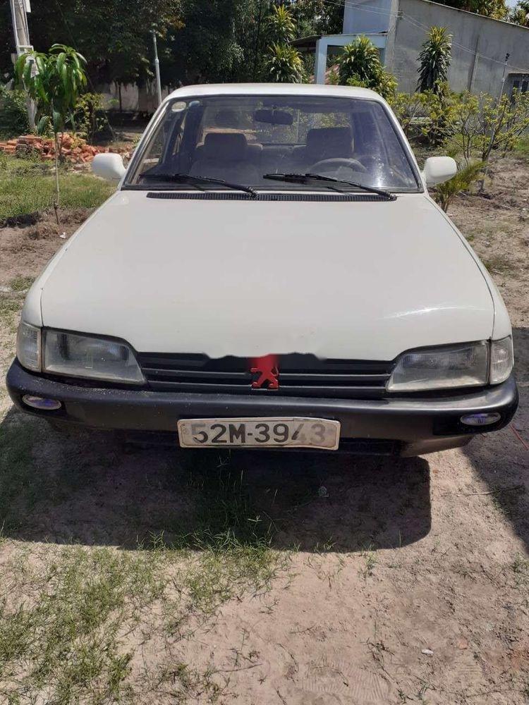 Cần bán xe Peugeot Traveller sản xuất 1982, nhập khẩu nguyên chiếc chính hãng (1)