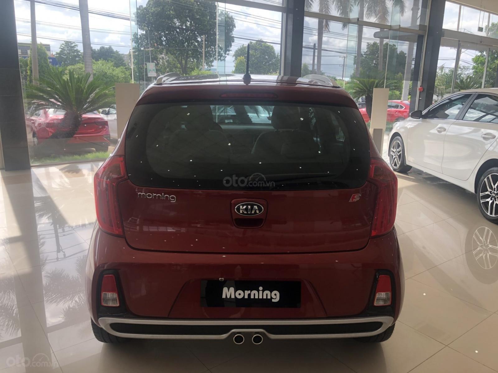 Bán Kia Morning 1.25 2019 - đủ màu - chỉ 100tr lấy xe -tại kia Biên Hòa - liên hệ: 0901.871.639 (3)