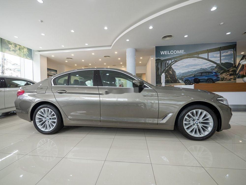 Cần bán BMW 5 Series năm sản xuất 2019, xe nhập (4)