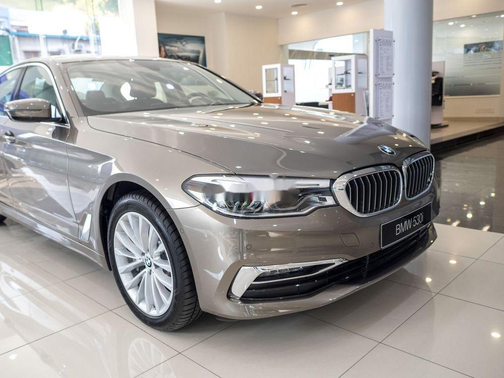 Cần bán BMW 5 Series năm sản xuất 2019, xe nhập (3)