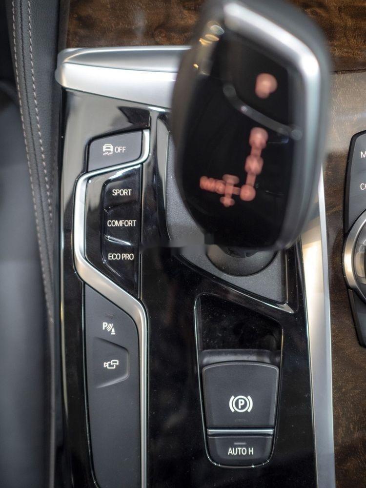 Cần bán BMW 5 Series năm sản xuất 2019, xe nhập (8)