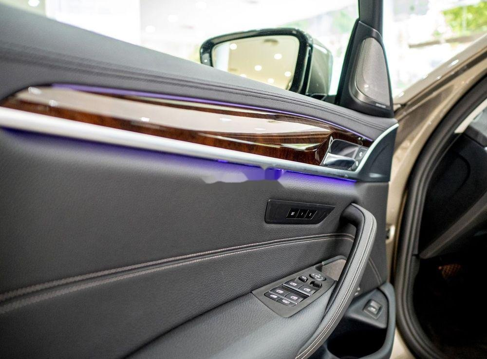 Cần bán xe BMW 530i đời 2019, màu vàng, nhập khẩu (7)