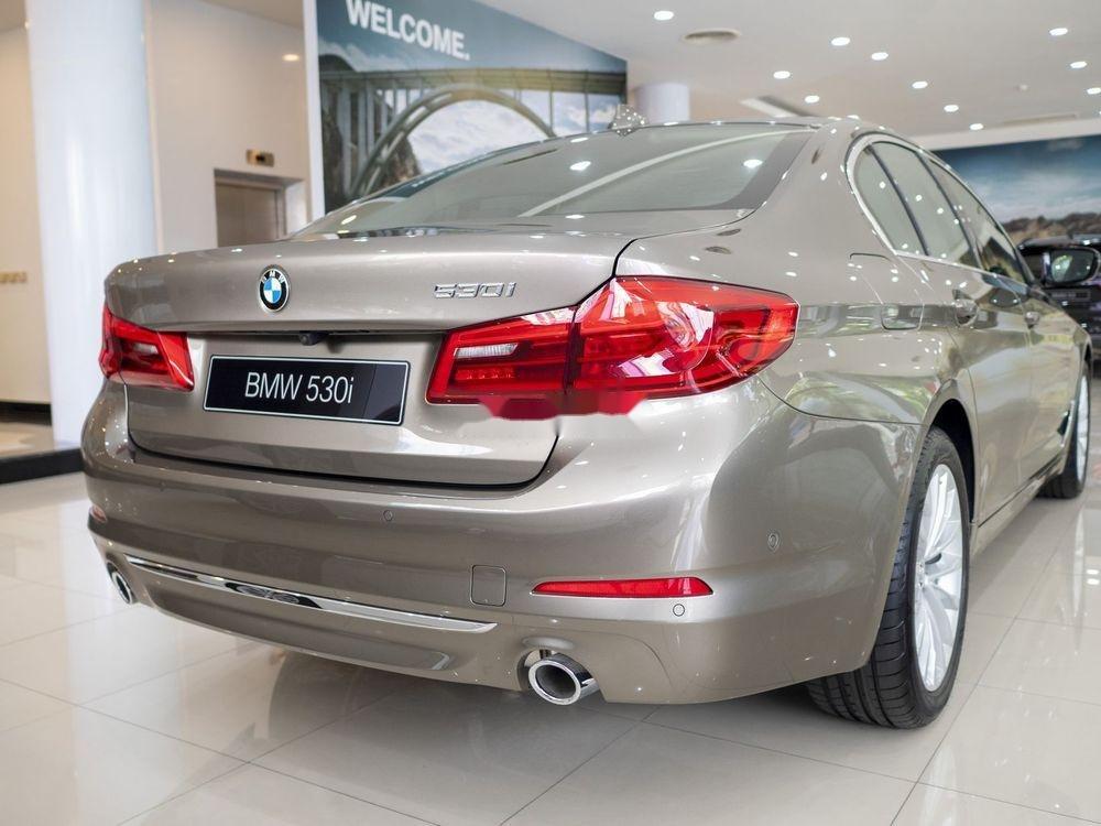 Cần bán xe BMW 530i đời 2019, màu vàng, nhập khẩu (6)