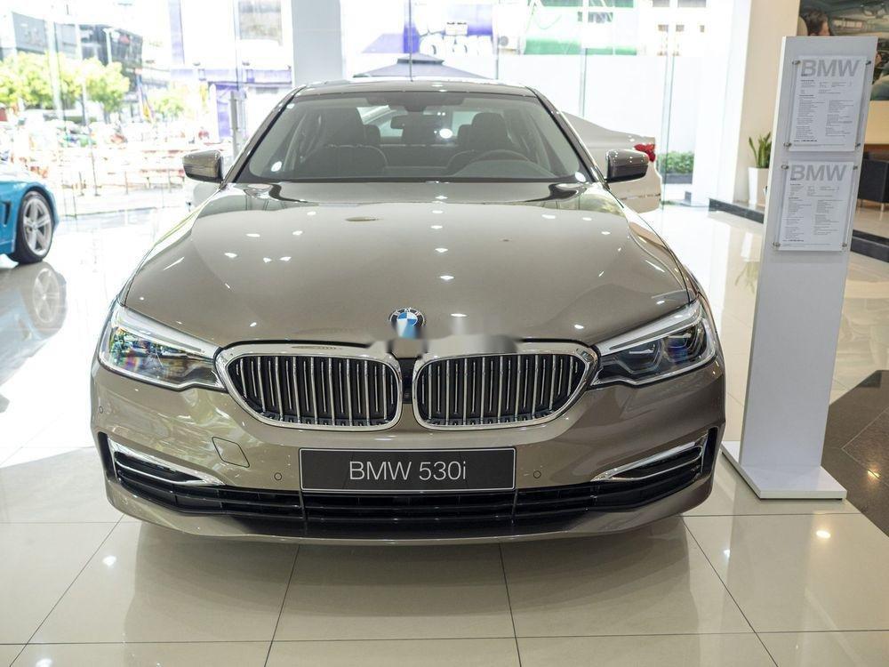 Cần bán xe BMW 530i đời 2019, màu vàng, nhập khẩu (1)