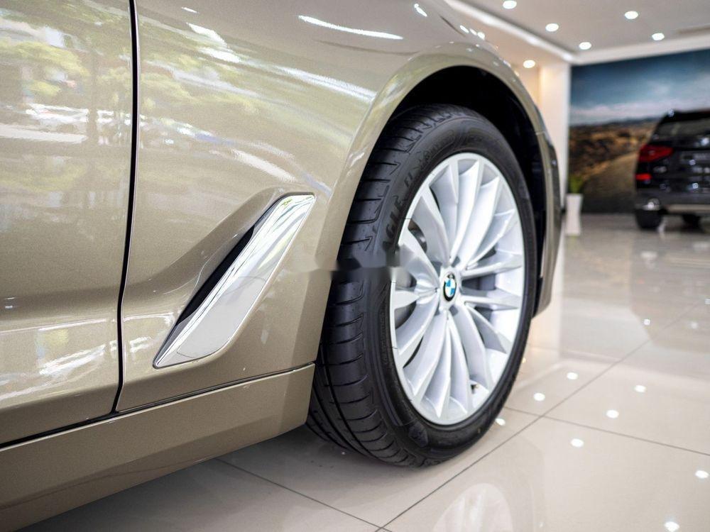 Cần bán xe BMW 530i đời 2019, màu vàng, nhập khẩu (5)