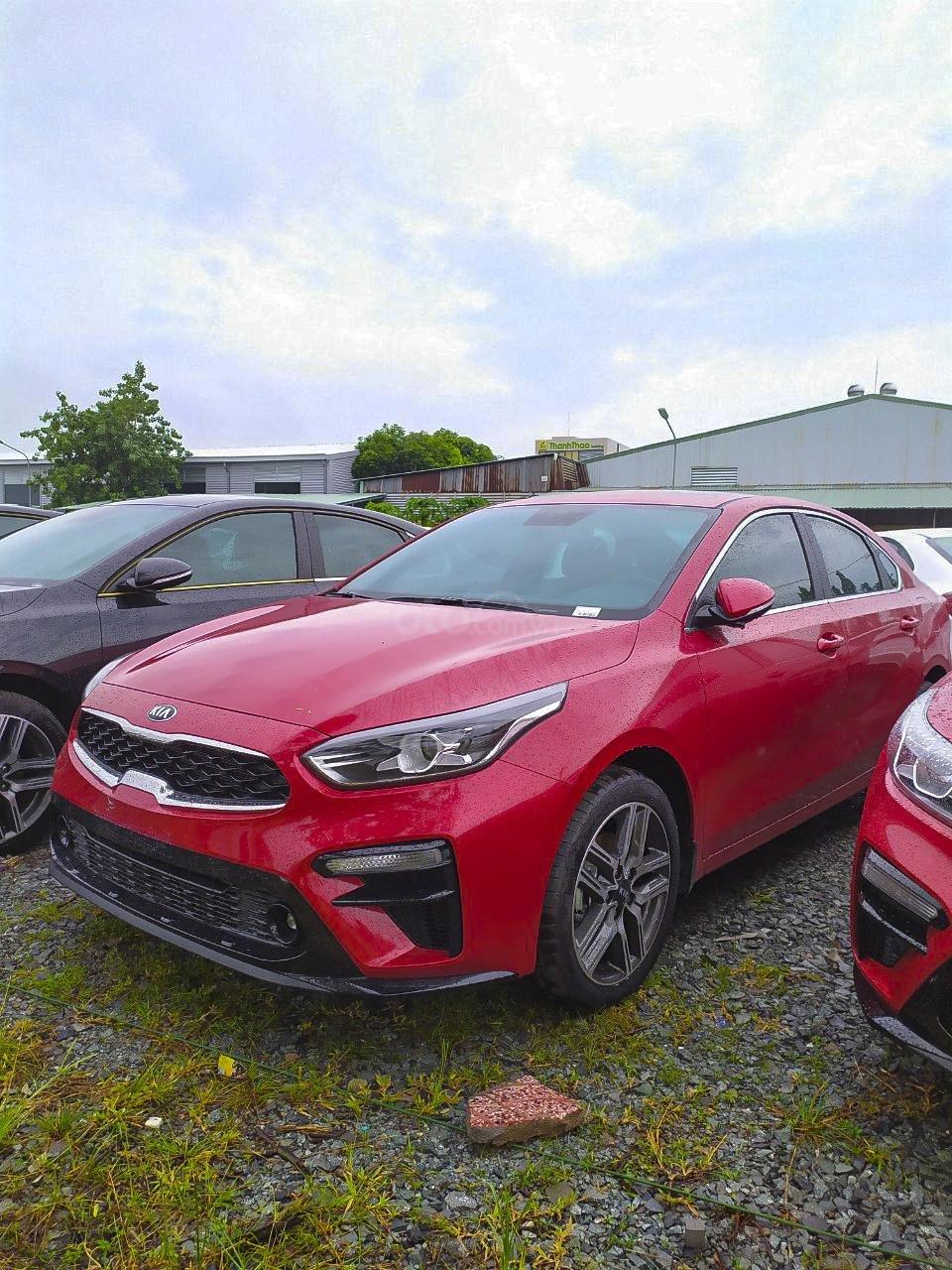 Cần bán xe Kia Cerato 2.0 Premium năm 2019, màu đỏ giá cạnh tranh (15)