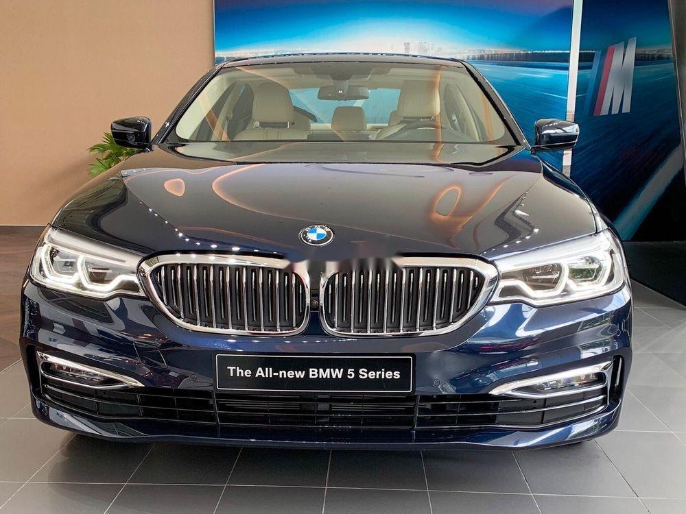 Bán ô tô BMW 530i 2019, màu xanh lam, nhập khẩu nguyên chiếc (2)