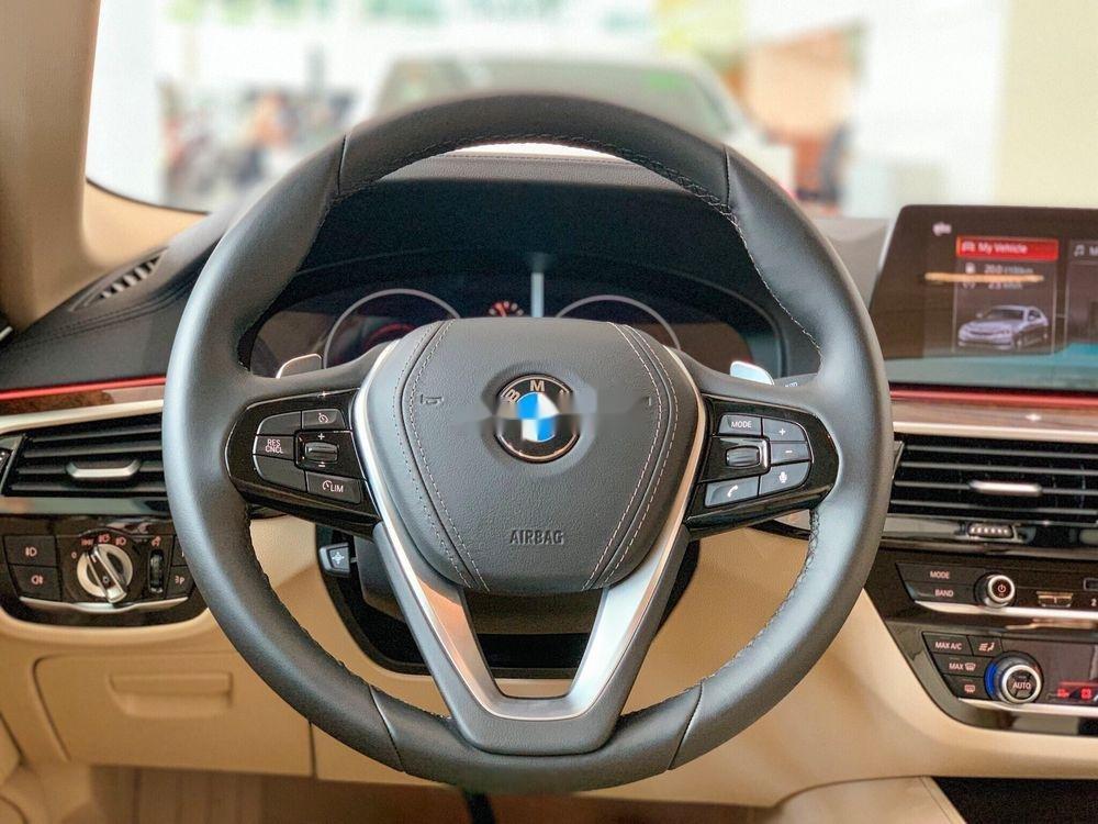 Bán ô tô BMW 530i 2019, màu xanh lam, nhập khẩu nguyên chiếc (4)