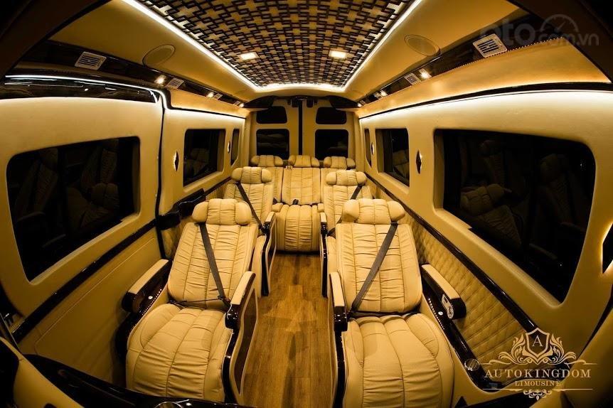 Solati Limousine- Chiếc xe dành cho đại gia đình (4)