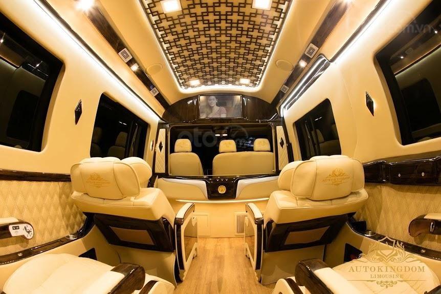 Solati Limousine- Chiếc xe dành cho đại gia đình (2)