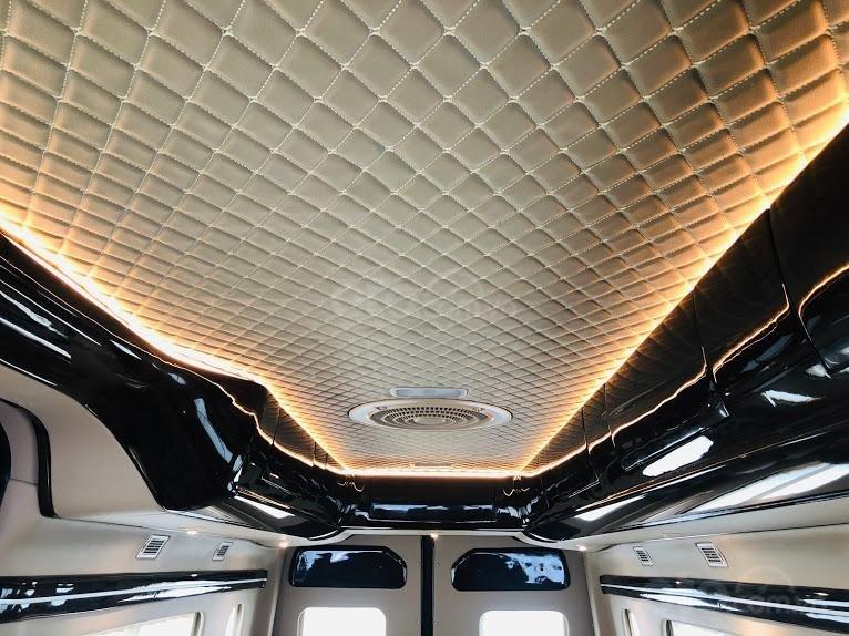 Solati Limousine- Chiếc xe dành cho đại gia đình (9)