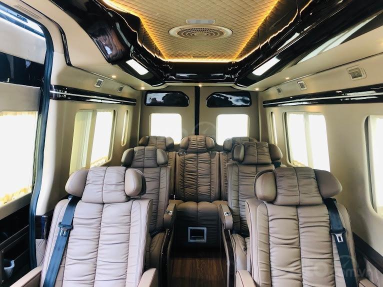 Solati Limousine- Chiếc xe dành cho đại gia đình (8)